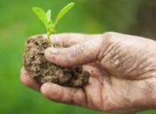 filiere locali agricole, desbri, brianza, parcgi agricoli bio piacenza
