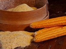 DESBri, Slow Food, Sovranità Alimentare