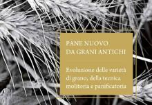 Pane nuovo da grani antichi, Provincia Siena, Progetto Spiga & Madia